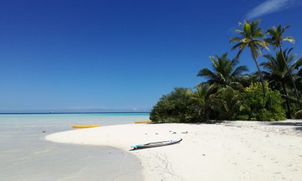 Kakšni so za počitnice Maldivi pri Shappi?
